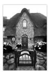 Reetgedeckt, geziegelt und mit bepflanztem Steinmäuerchen davor: Das typische Sylter Haus.