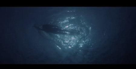 """Einer der ikonischsten Bilder der Filmgeschichte und nur ein Beispiel für Spielbergs großartige Regiearbeit.   Quelle: """"Der weiße Hai"""" Trailer / Universal"""
